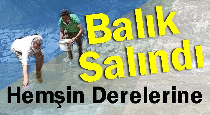 1.016.00 YAVRU BALIK DERELERE SALINDI