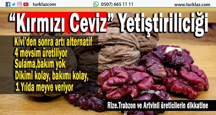 D.KARADENİZLİ ÜRETİCİLERE ALTERNATİF ÜRÜN