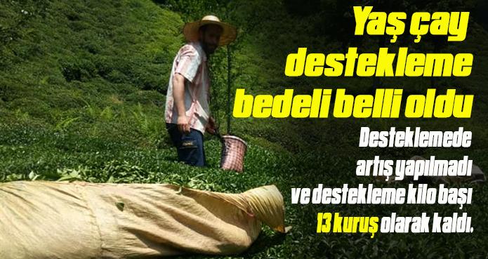 YAŞ ÇAY DESTEKLEME BEDELİNE ARTIŞ YAPILMADI