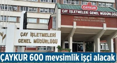 ÇAYKUR 600 MEVSİMLİK İŞÇİ ALACAK