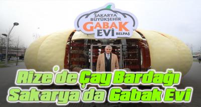 Kabak motifli Gabak Evi, Sakarya'nın tanıtımına katkı sunacak
