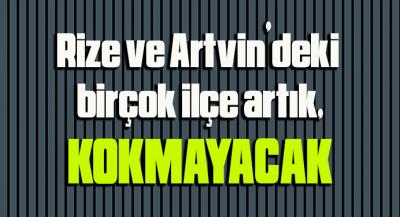 VAHŞİ DEPOLAMA BERTARAF EDİLECEK