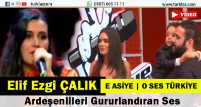 TV8 \
